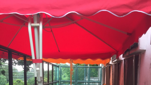 Four umbrella installed in Coloane kennel (4)