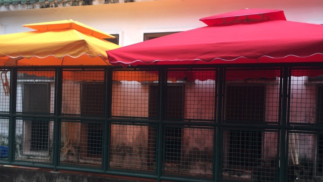 Four umbrella installed in Coloane kennel