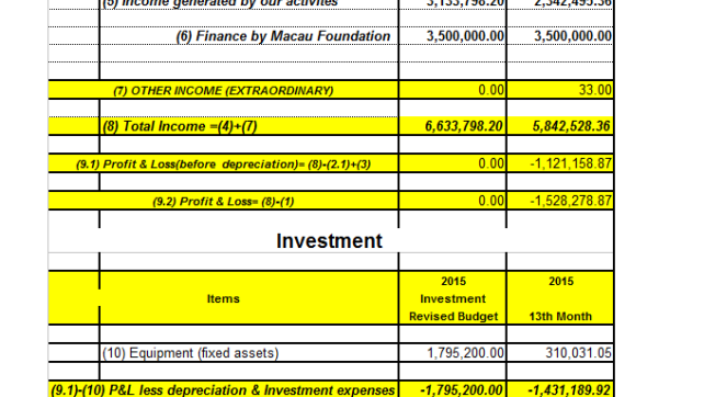 Budget and P&L 2015 (3)
