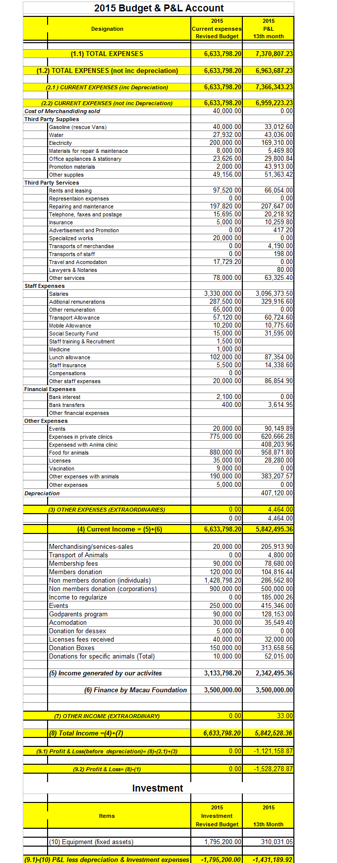 Budget and P&L 2015 (4)