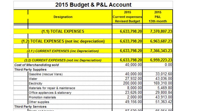 Budget and P&L 2015