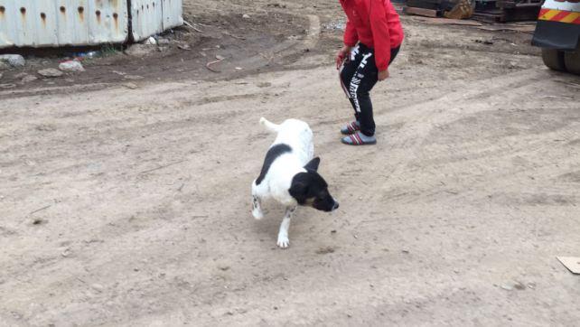 SPP1619-Hilda returned to Ka-Ho(2)