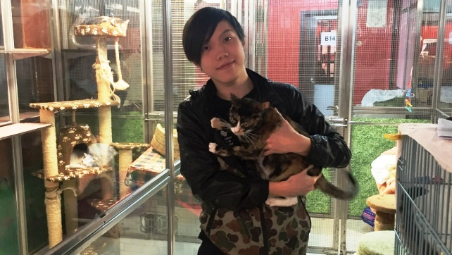 C886-Willa with the adopter