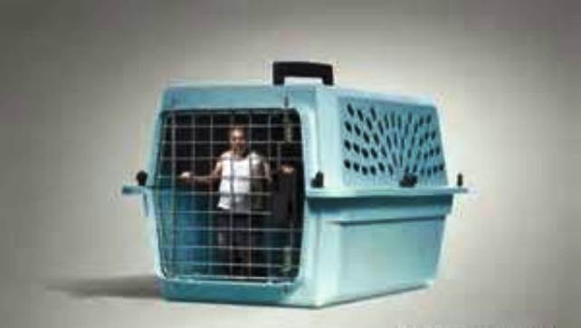 human caged
