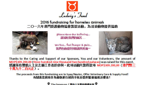 2016-05-23-2016 Fundraising for homeless animals (6)