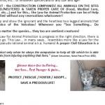 2017 Fundraising for homeless animals-EN (2)