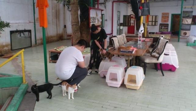 2017-05-13-HKMS (3)