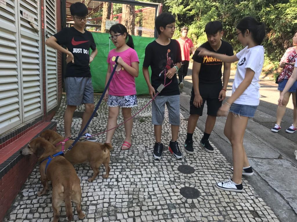 APIM-19-08-2017 (11)