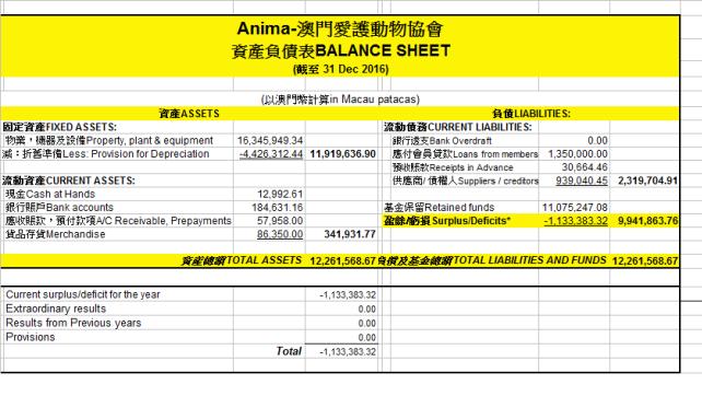 2016-Balance Sheet(EN, CH)