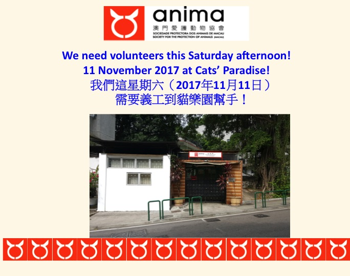 2017-11-09-need volunteers
