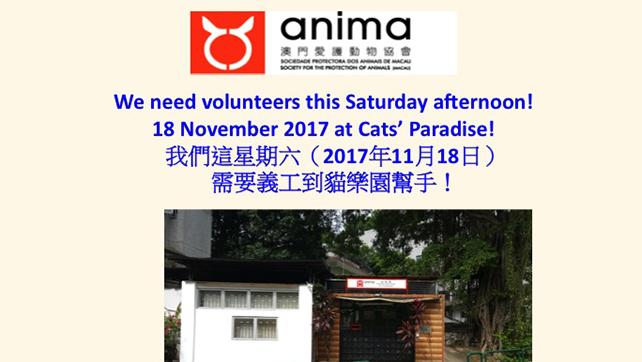 2017-11-16-Need volunteers