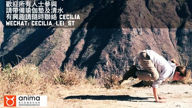 2018-01-29-Cecilia yoga (2)